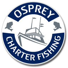 Osprey Charter Fishing